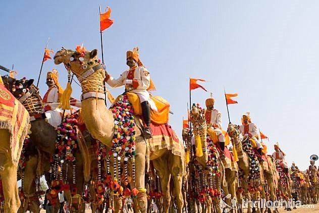 Camel Festival-Bikaner